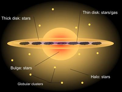 Stellar Halo | COSMOS
